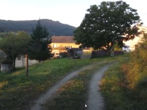landschap camino del norte