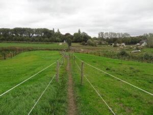 Via Coriovallum vergezicht met smal pad tussen weilanden