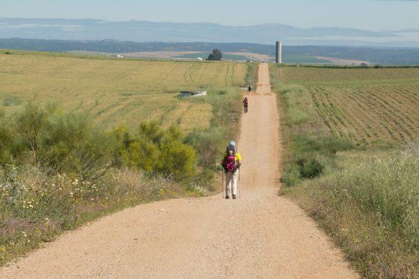 Camino Via de la Plata