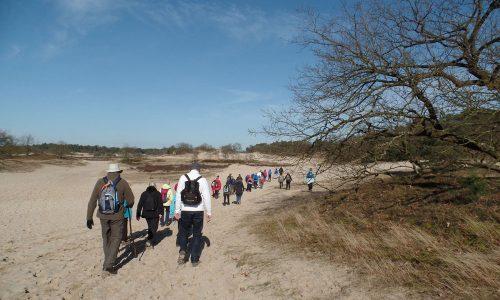 wandelaars in de drunense duinen